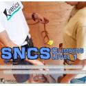 SNCS Level 1 (SAFRA)
