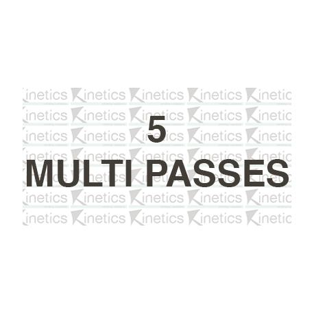 Multi-passes x 5 ($70)