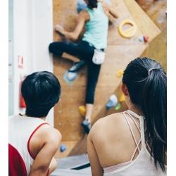 Climbing Kinetics